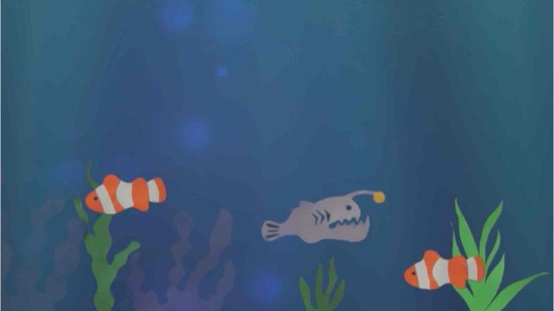 Life Under Water2